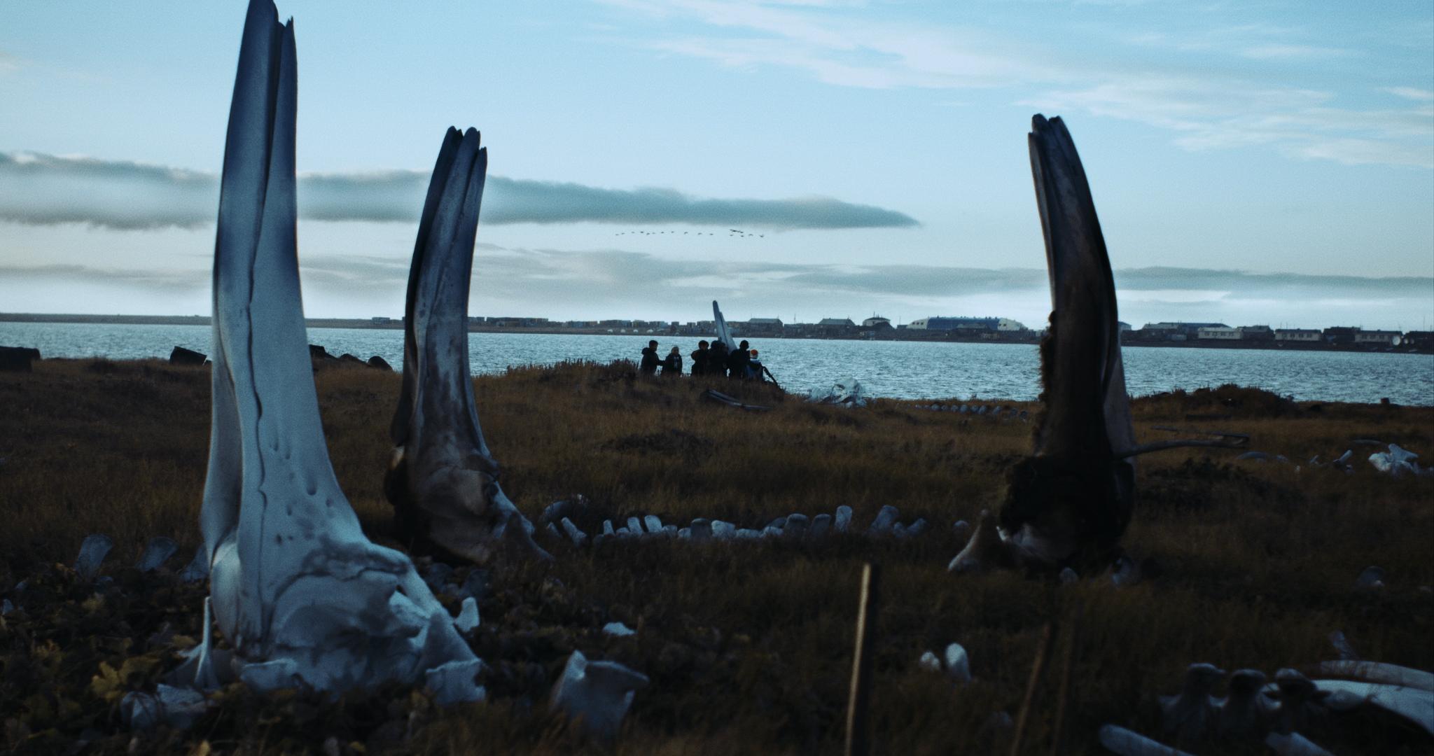wieloryb_z_lorino