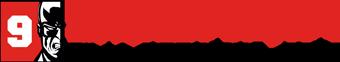 Logo 9. Solanin Film Festiwal